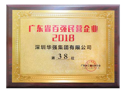 2018年广东省百强民营企业第38位