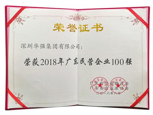 2018广东民营企业100强