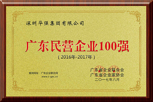 2016-2017年度广东民营企业100强