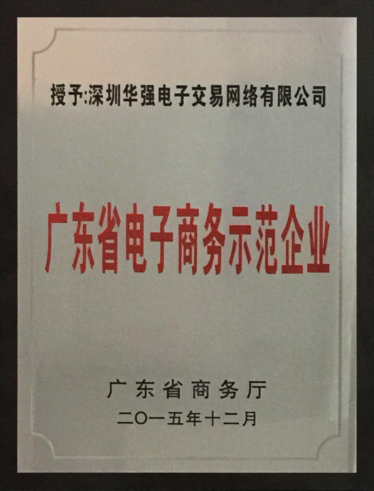 2015年度广东省电子商务示范企业